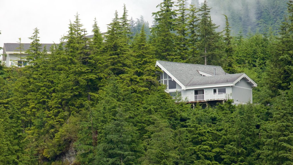 Ketchikan which includes forests and a house