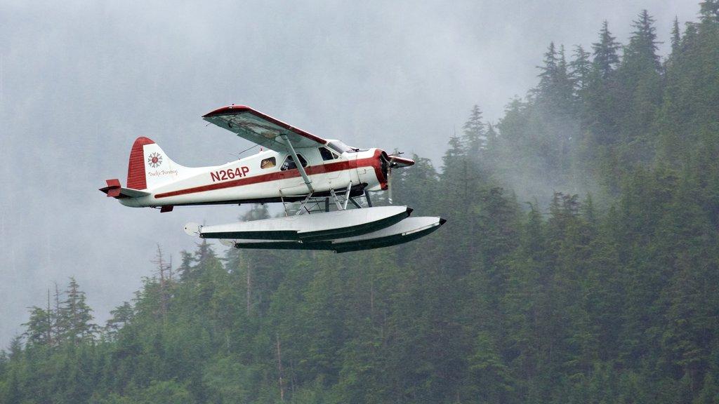 Ketchikan showing aircraft and an aircraft