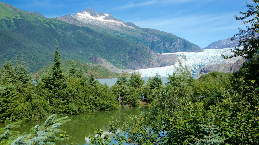 Mendenhall Glacier which includes forests and a pond
