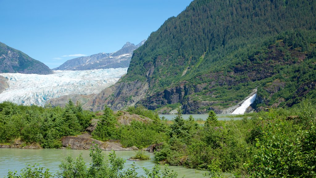 Mendenhall Glacier featuring forests and general coastal views