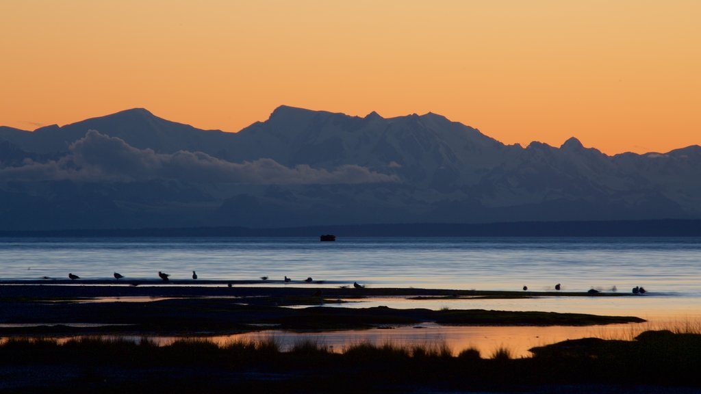 Anchorage featuring a sandy beach and a sunset