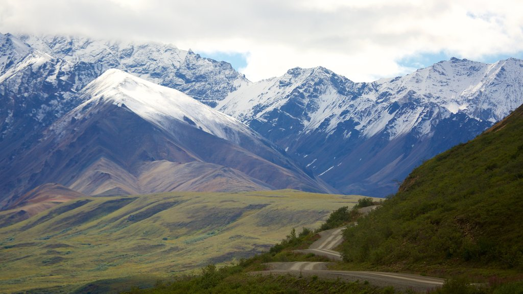 Denali National Park showing mountains