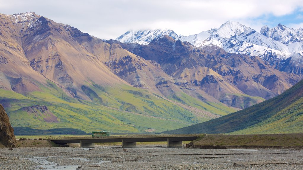 Denali National Park showing mountains and a bridge