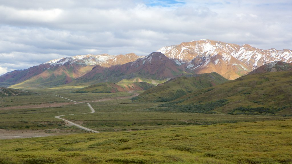 Denali National Park featuring landscape views and mountains