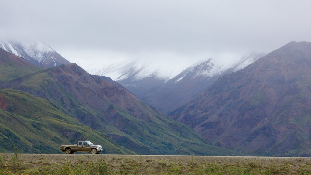 Denali National Park featuring mist or fog and mountains