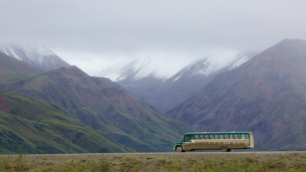 Denali National Park showing mist or fog and mountains
