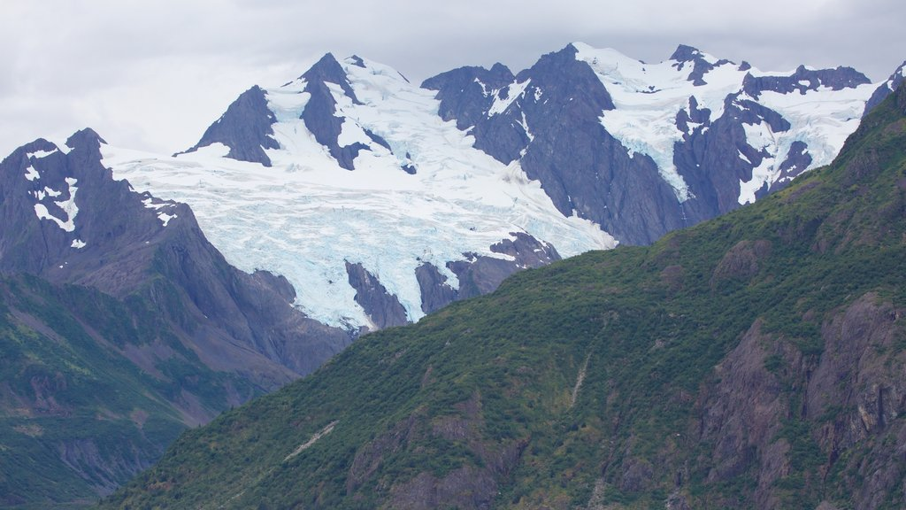 Kenai Fjords National Park showing snow and mountains