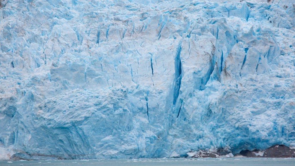Kenai Fjords National Park ofreciendo nieve