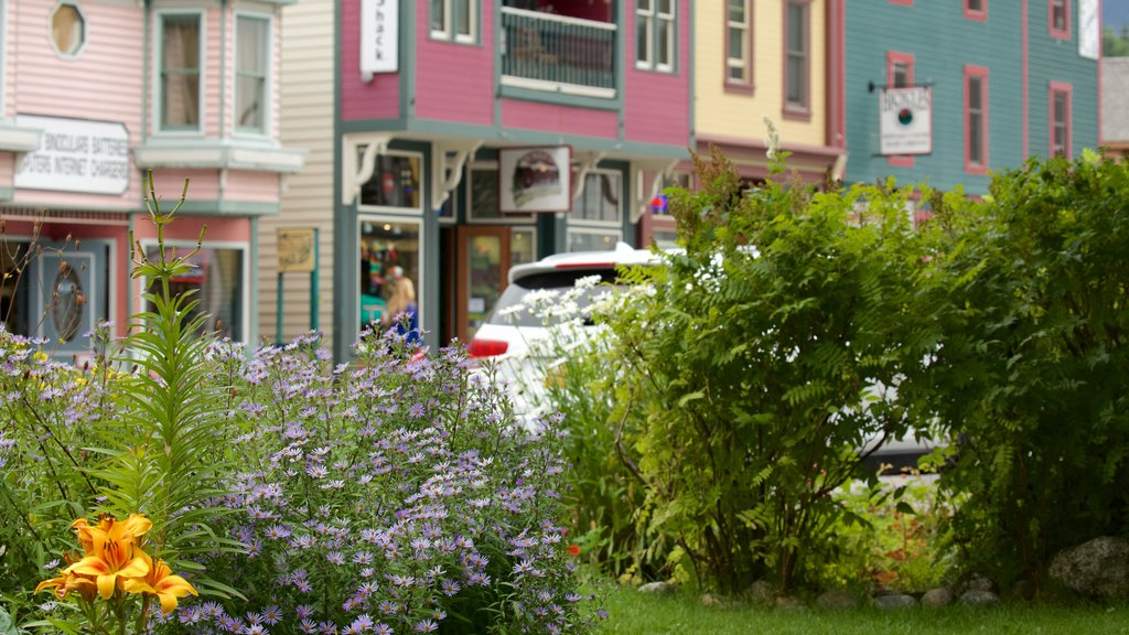 Skagway featuring flowers and a park