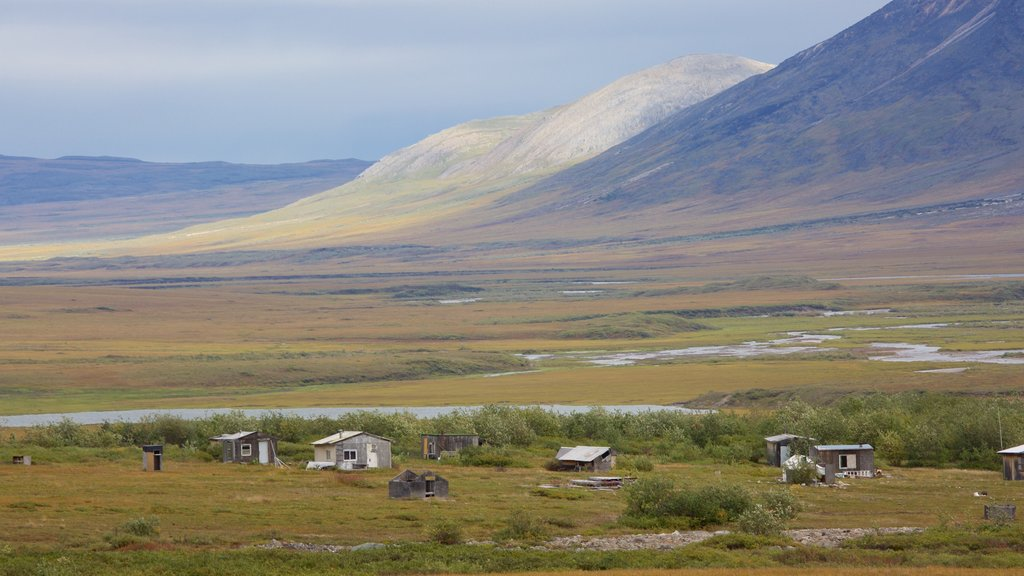 Gates of the Arctic National Park featuring tranquil scenes and landscape views