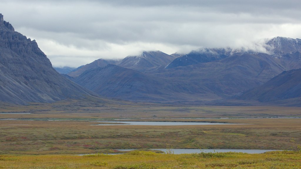 Gates of the Arctic National Park featuring landscape views, mountains and tranquil scenes