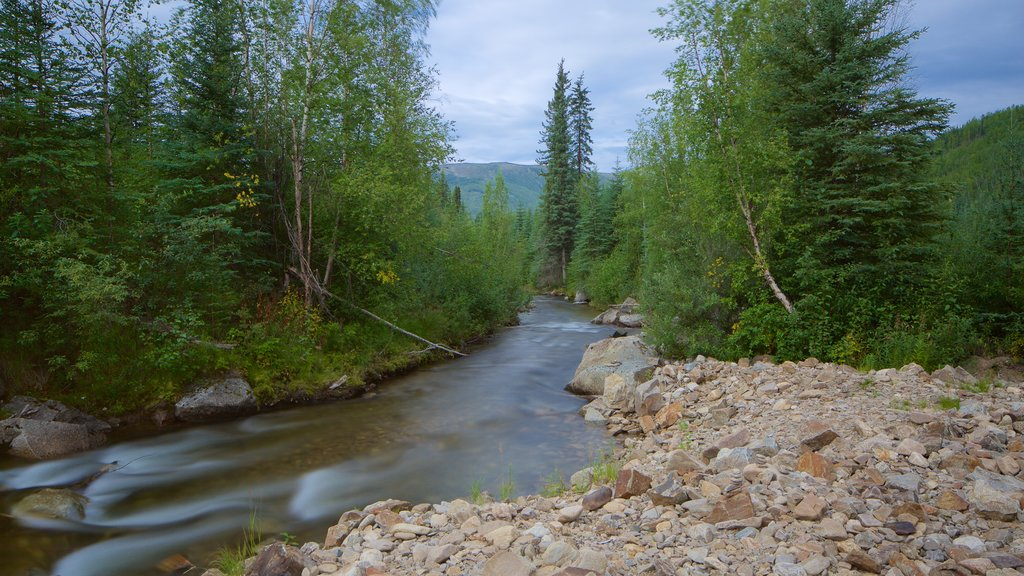 Chena Hot Springs which includes forest scenes and a river or creek