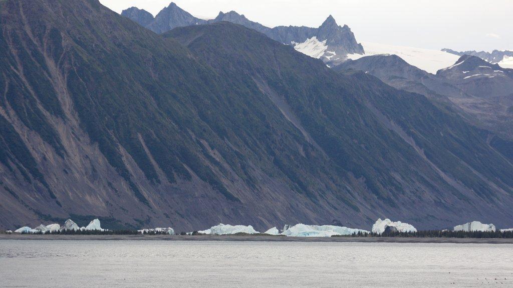 Kenai Fjords National Park ofreciendo nieve y montañas