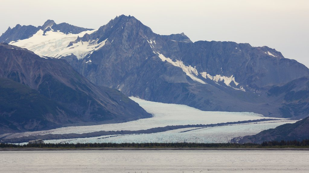 Kenai Fjords National Park showing mountains and snow