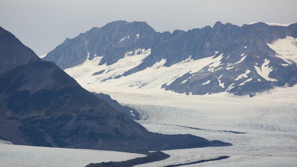 Kenai Fjords National Park mostrando montañas y nieve