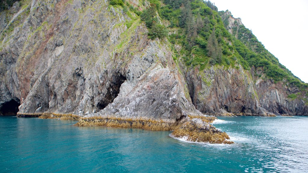 Kenai Fjords National Park showing rocky coastline