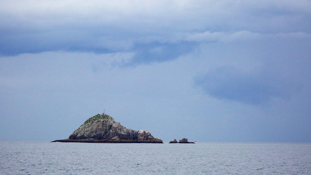 Kenai Fjords National Park ofreciendo imágenes de una isla