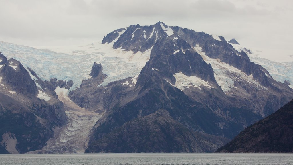 Kenai Fjords National Park featuring snow and mountains