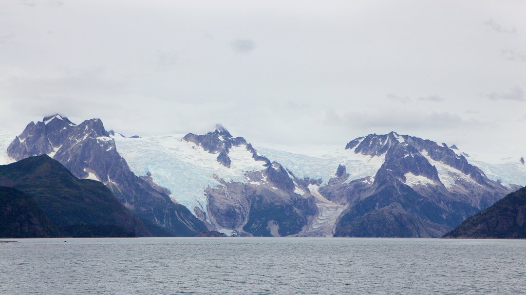 Kenai Fjords National Park which includes snow, general coastal views and mountains