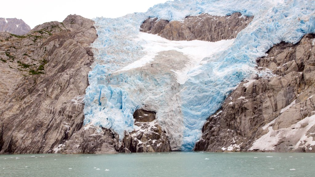 Kenai Fjords National Park which includes snow, rocky coastline and mountains
