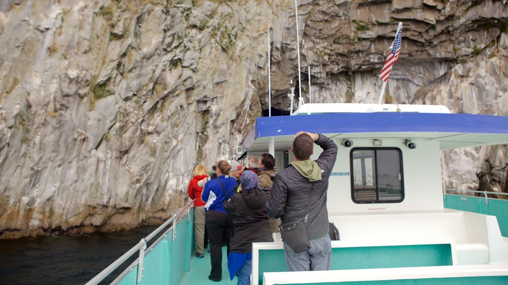Kenai Fjords National Park which includes whale watching