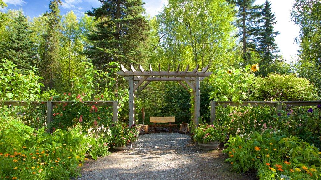 Alaska Botanical Garden showing a garden