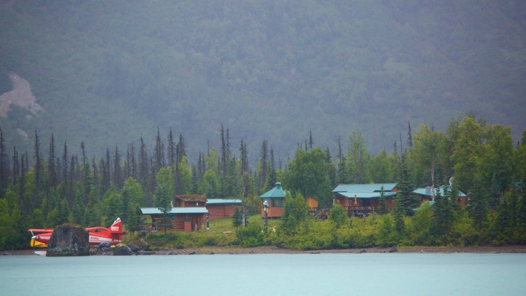 Lake Clark National Park and Preserve showing a small town or village, a lake or waterhole and forests