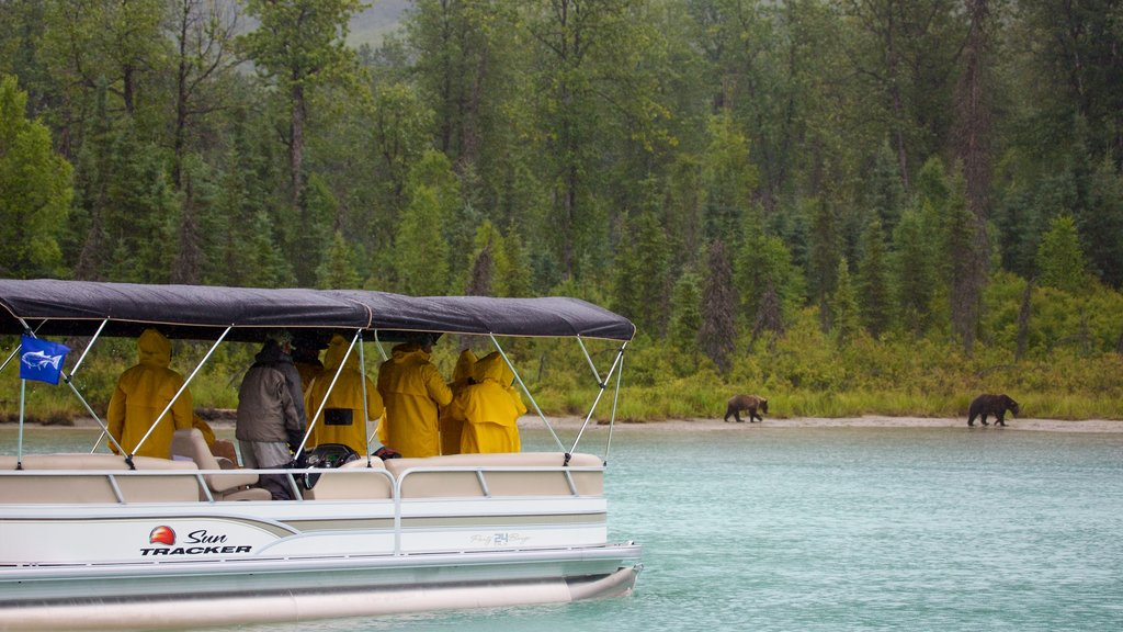 Lake Clark National Park and Preserve showing dangerous animals, land animals and forests