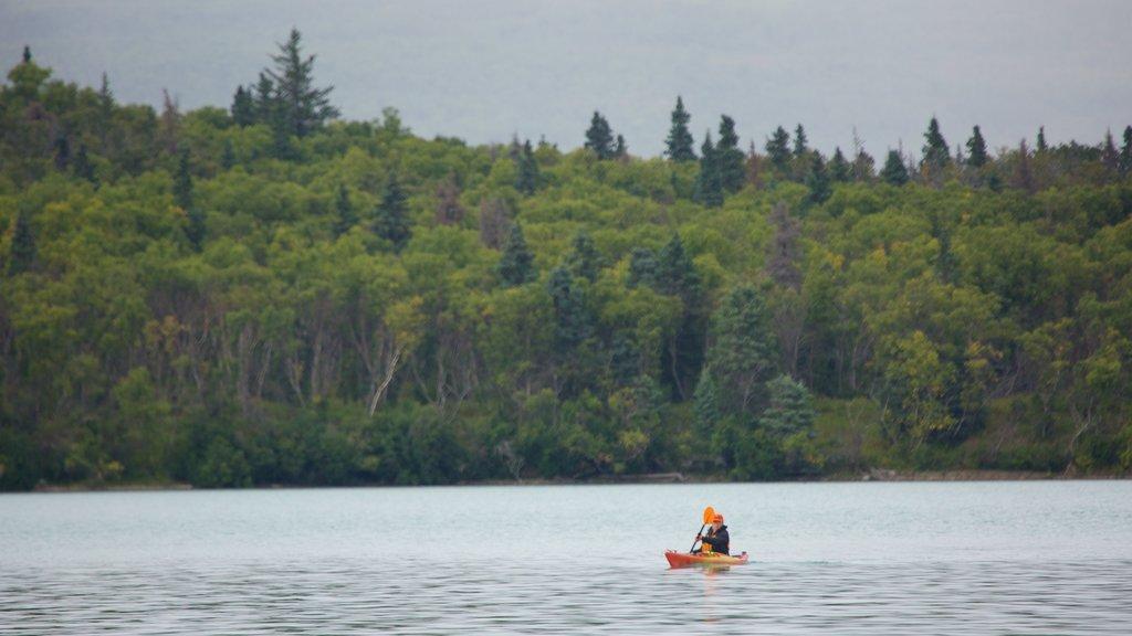 King Salmon showing kayaking or canoeing