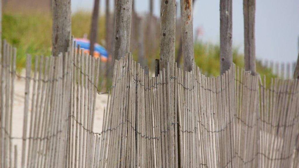 Atlantic City mostrando vistas generales de la costa y una playa de arena