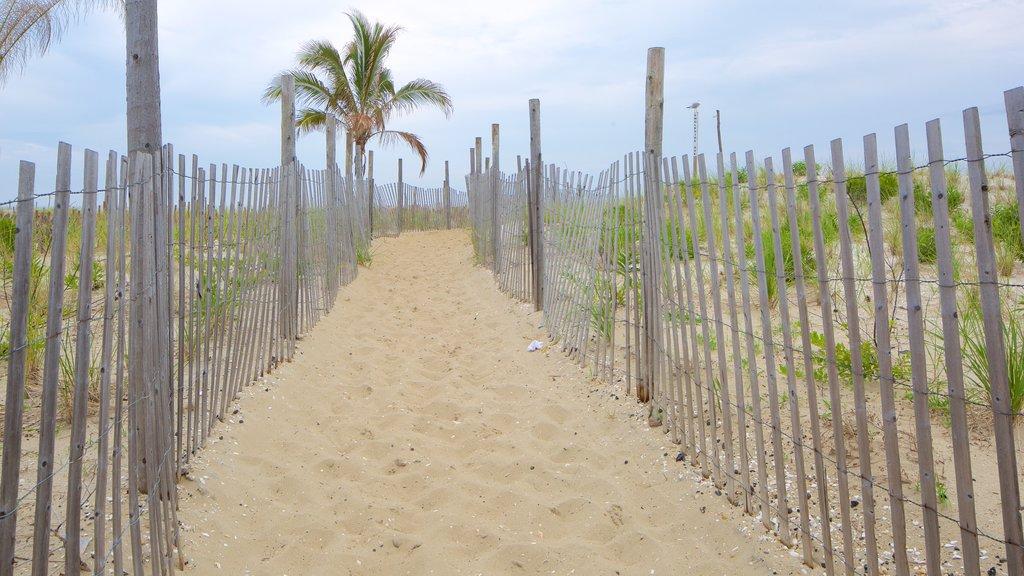Atlantic City mostrando una playa de arena y escenas tropicales