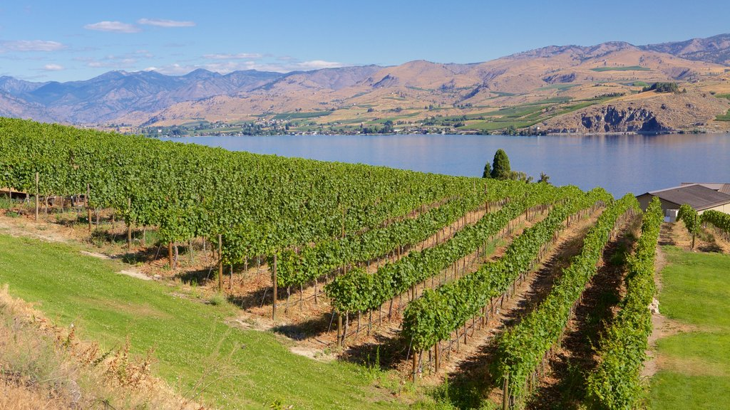 Chelan which includes a river or creek and farmland