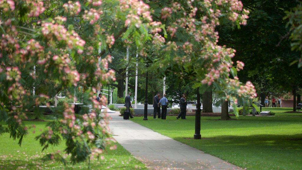 Waltham featuring a garden