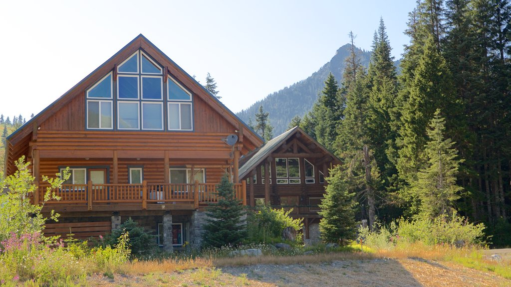 Snoqualmie Pass which includes a house