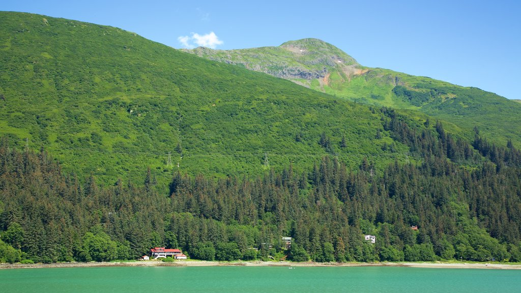 Juneau featuring a river or creek, landscape views and forest scenes