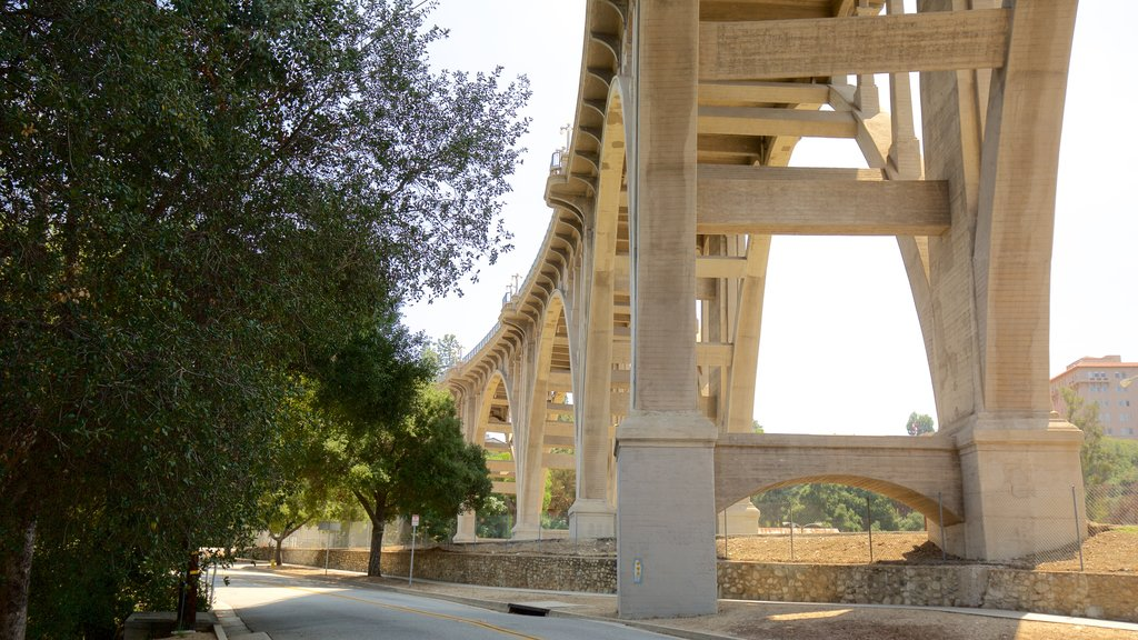 Pasadena which includes a bridge