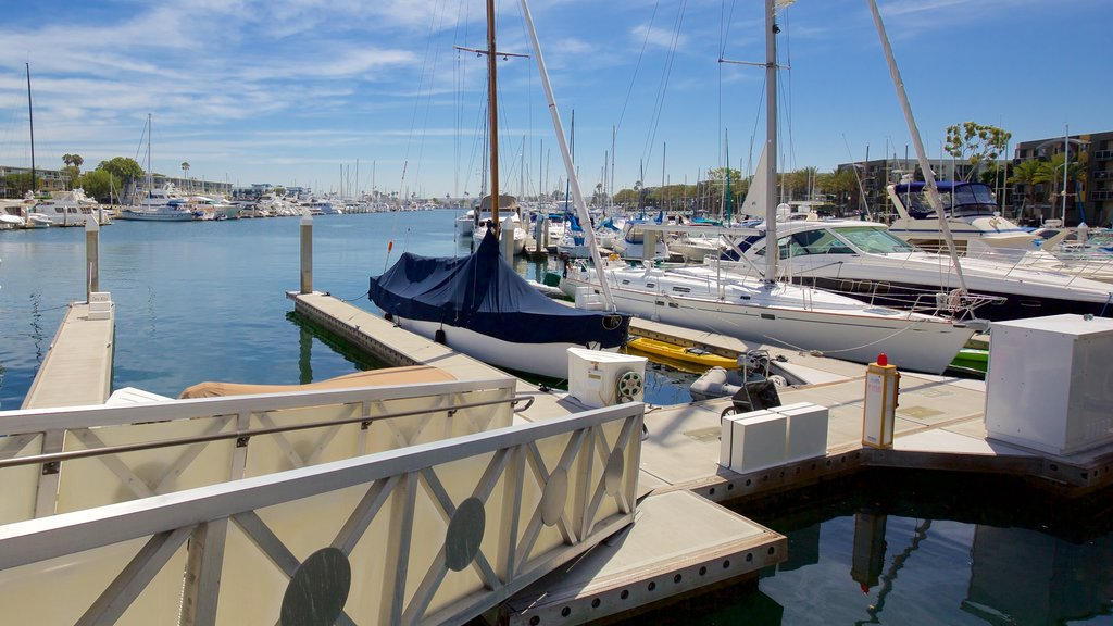 Marina del Rey showing boating, sailing and a marina