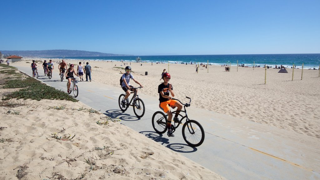 Manhattan Beach showing cycling and a beach as well as a small group of people