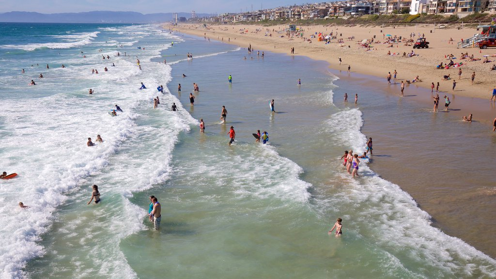 Manhattan Beach which includes a sandy beach and swimming as well as a large group of people