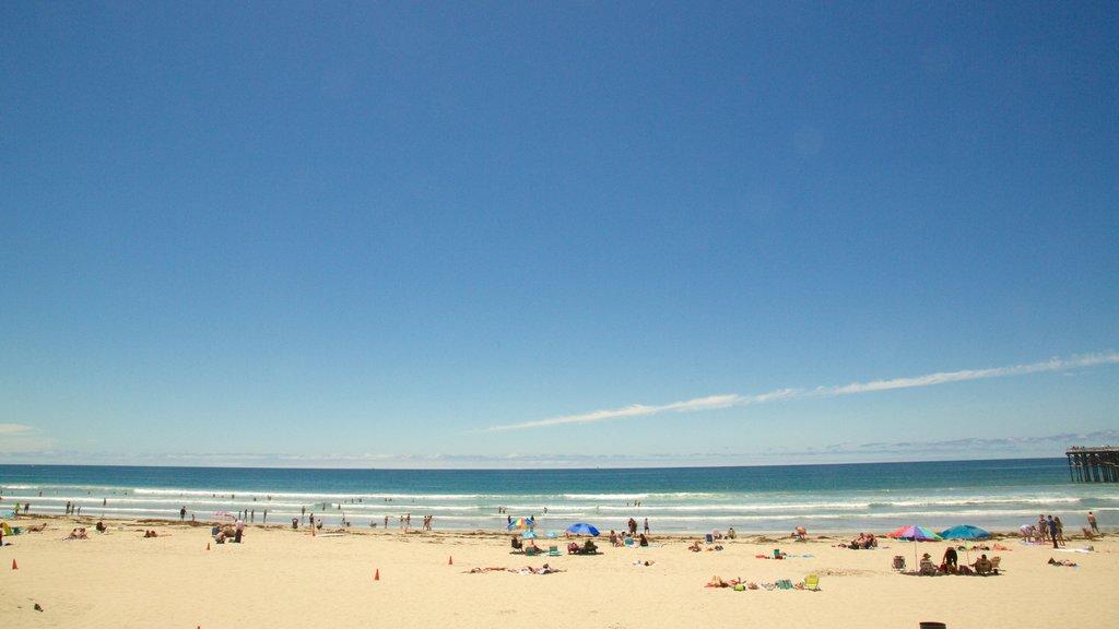49883646a07 Pacific Beach Travel Guides
