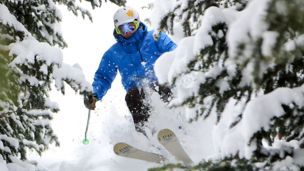 Deer Valley Resort showing snow and snow skiing