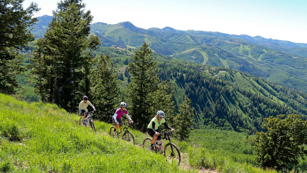 Deer Valley Resort featuring landscape views, mountain biking and forests
