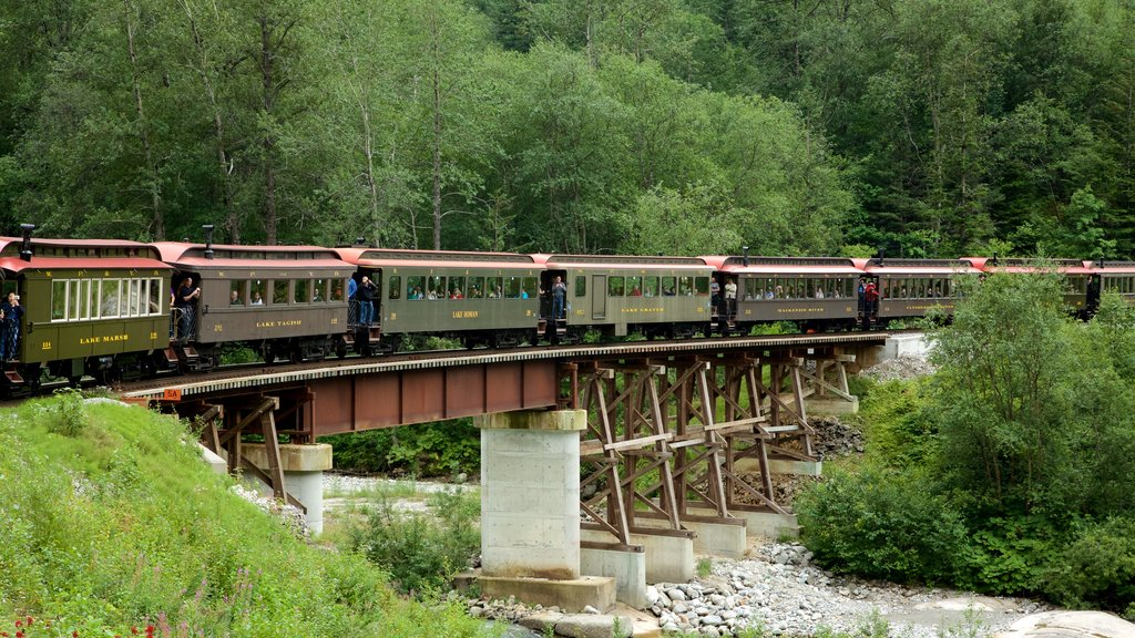 White Pass which includes railway items and a bridge
