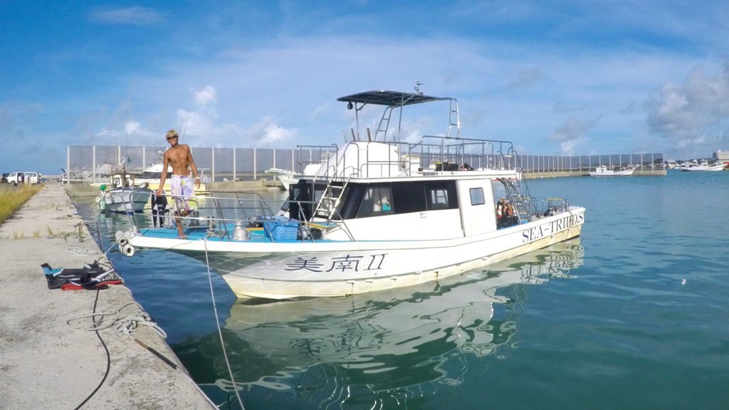 Ishigaki which includes boating and general coastal views as well as an individual male
