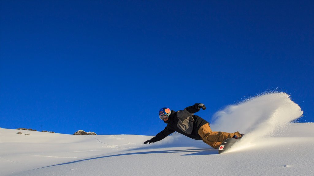Hotham Heights showing snow boarding and snow