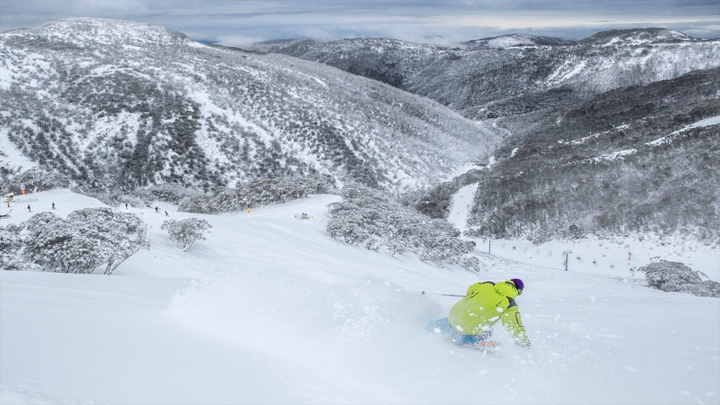 Hotham Heights which includes mountains, snow skiing and snow