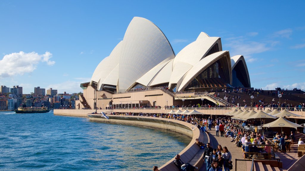Sydney Opera House which includes a square or plaza, general coastal views and a city