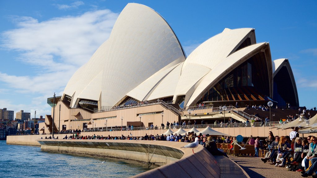Sydney Opera House which includes modern architecture, general coastal views and a city