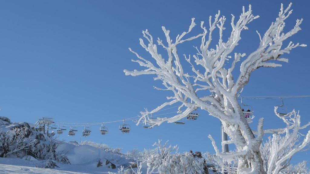 Perisher Ski Resort showing a gondola and snow