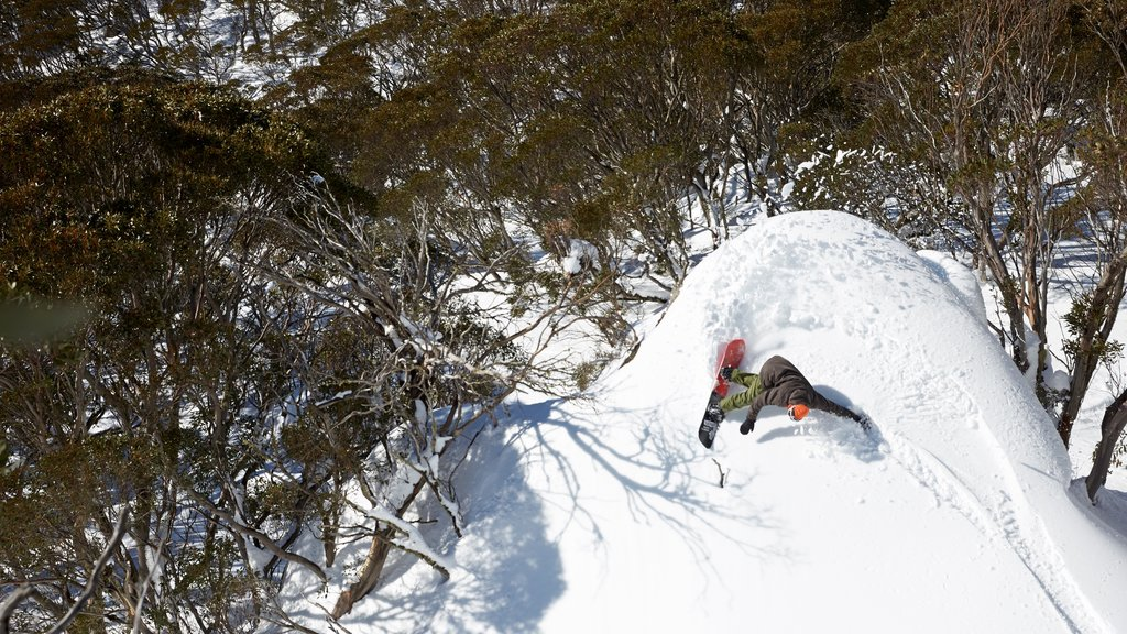 Perisher Ski Resort which includes snow and snow boarding